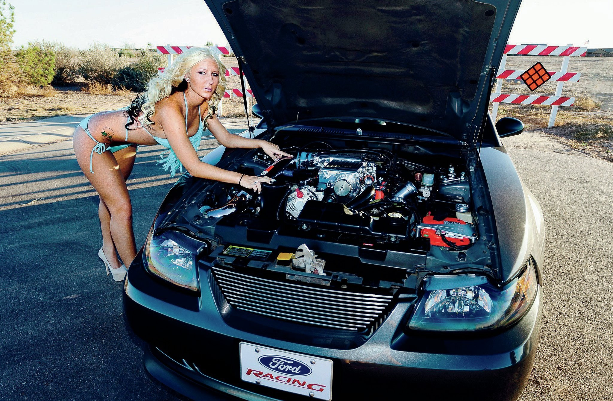 2003-ford-mustang-engine-view-emily-oney.jpg (2048×1340) | Cars And Girls |  Pinterest | Cars