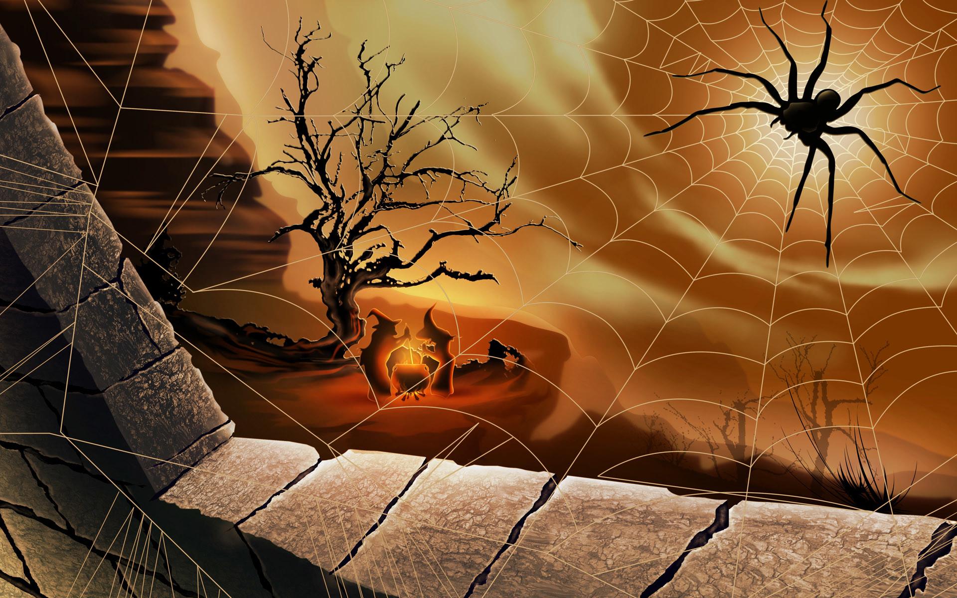 Black spider – halloween wallpaper