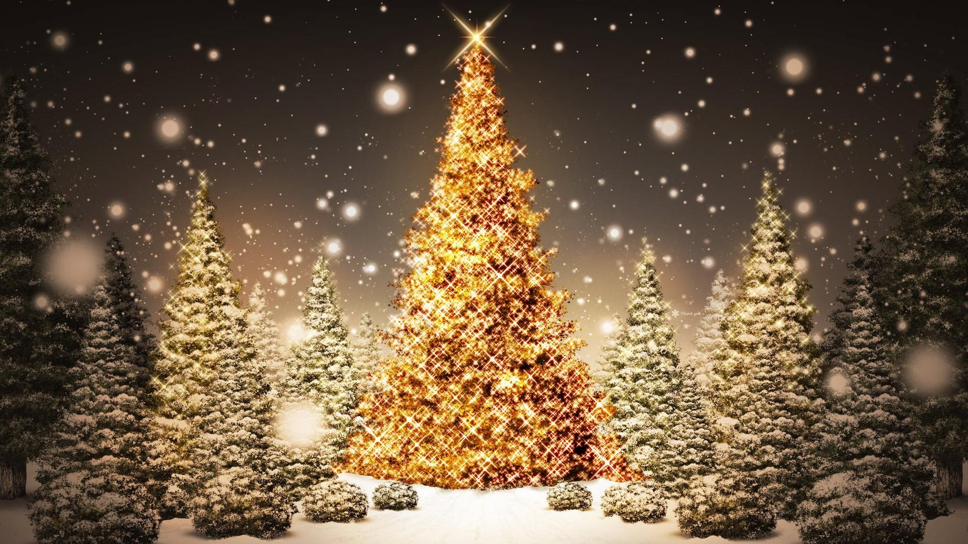 Preview wallpaper new year, christmas, trees, wood, card, snow, night