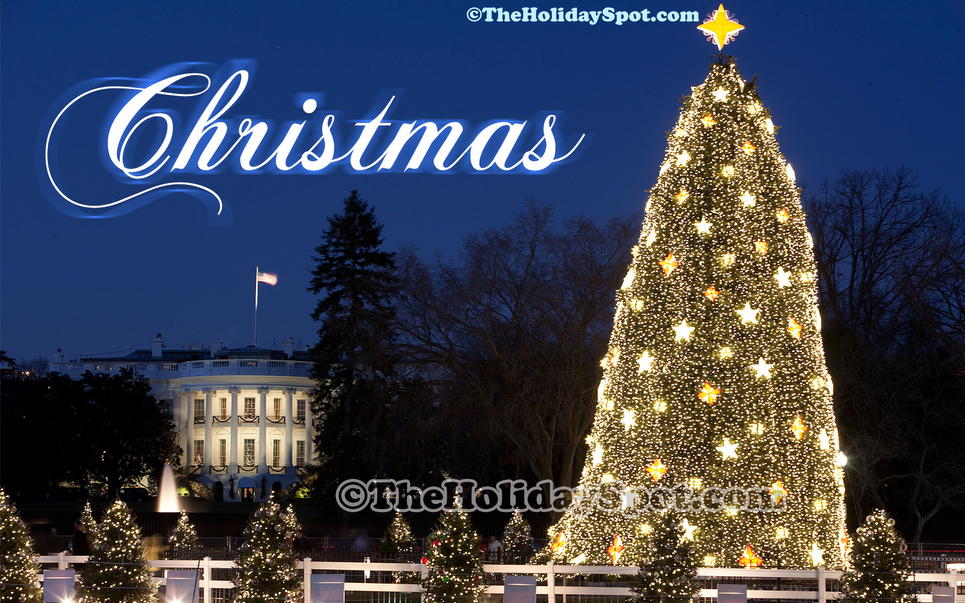 A high definition christmas wallpaper of Christmas celebration at White  House