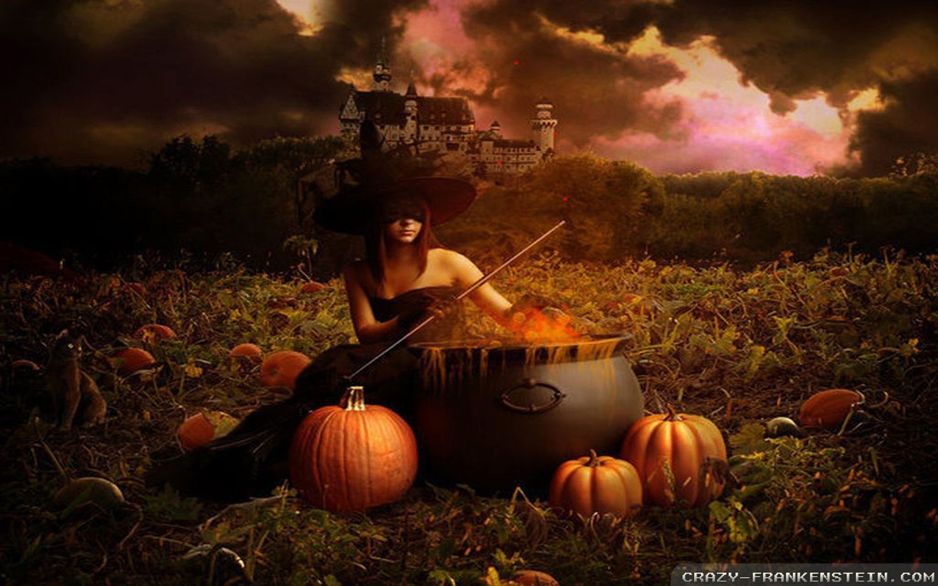Halloween Witch wallpapers – Crazy Frankenstein