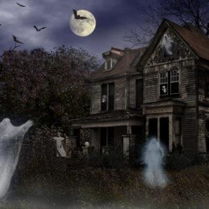 Animated Halloween