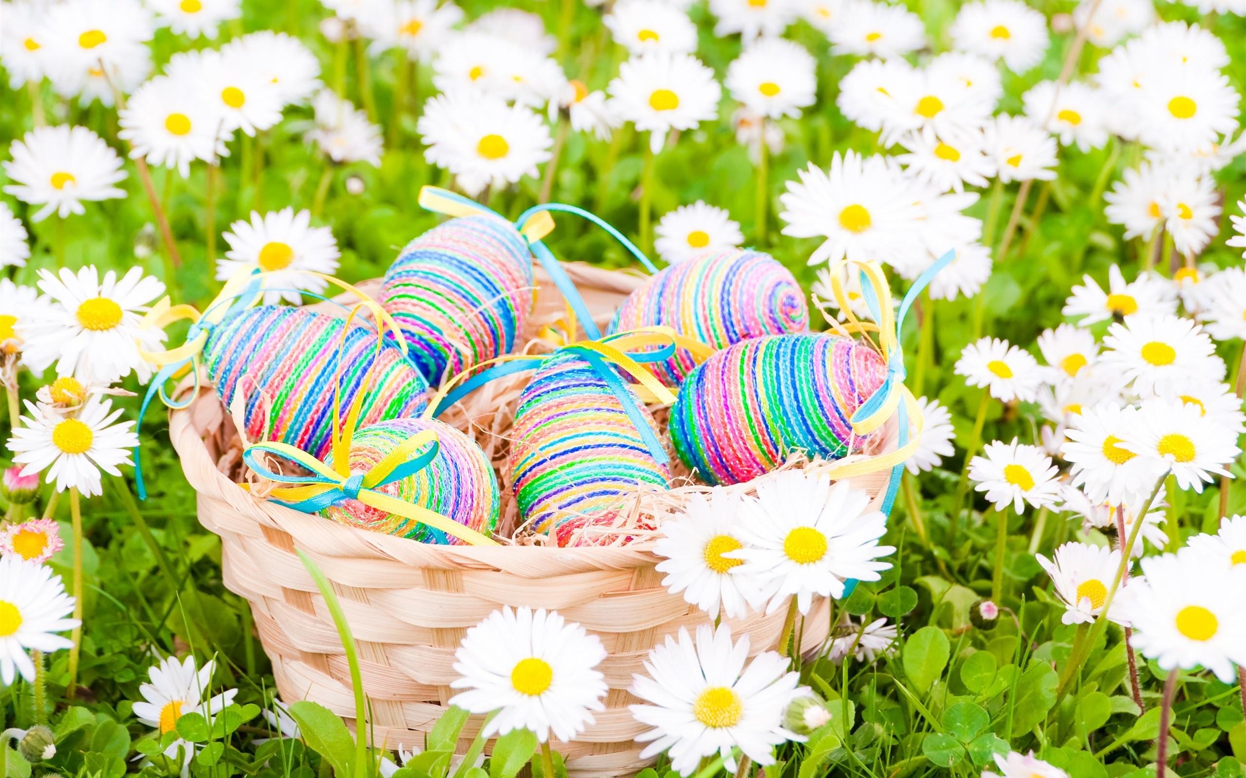 Easter, eggs, daisies, white flowers, spring wallpaper thumb