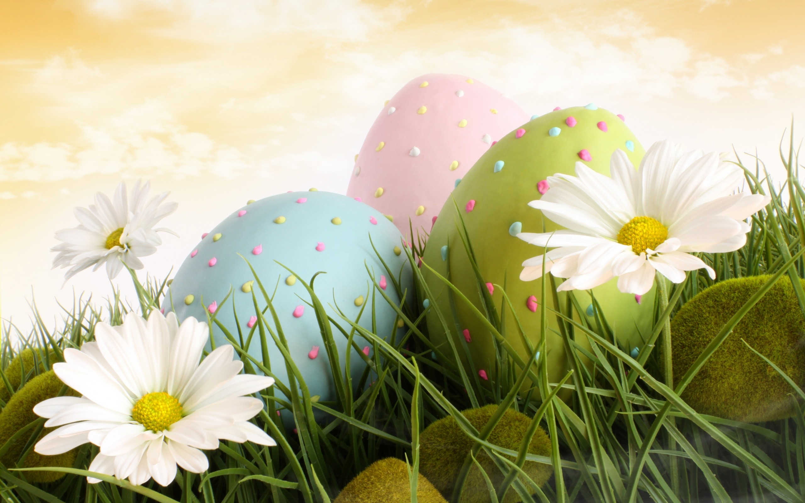 HD Bunnies And Easter Wallpapers Desktop Backgrounds   Funmole