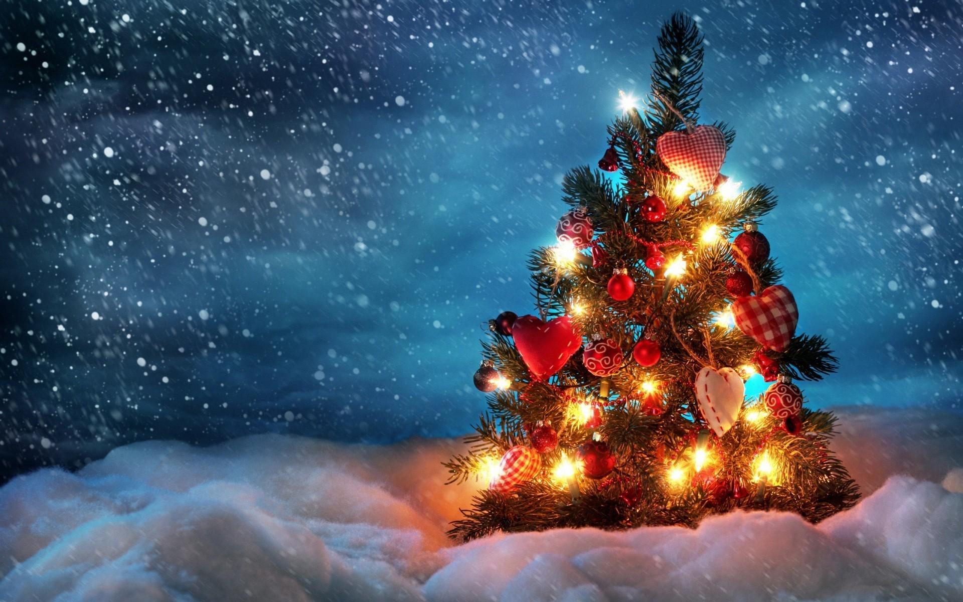 Beautiful christmas tree wallpaper