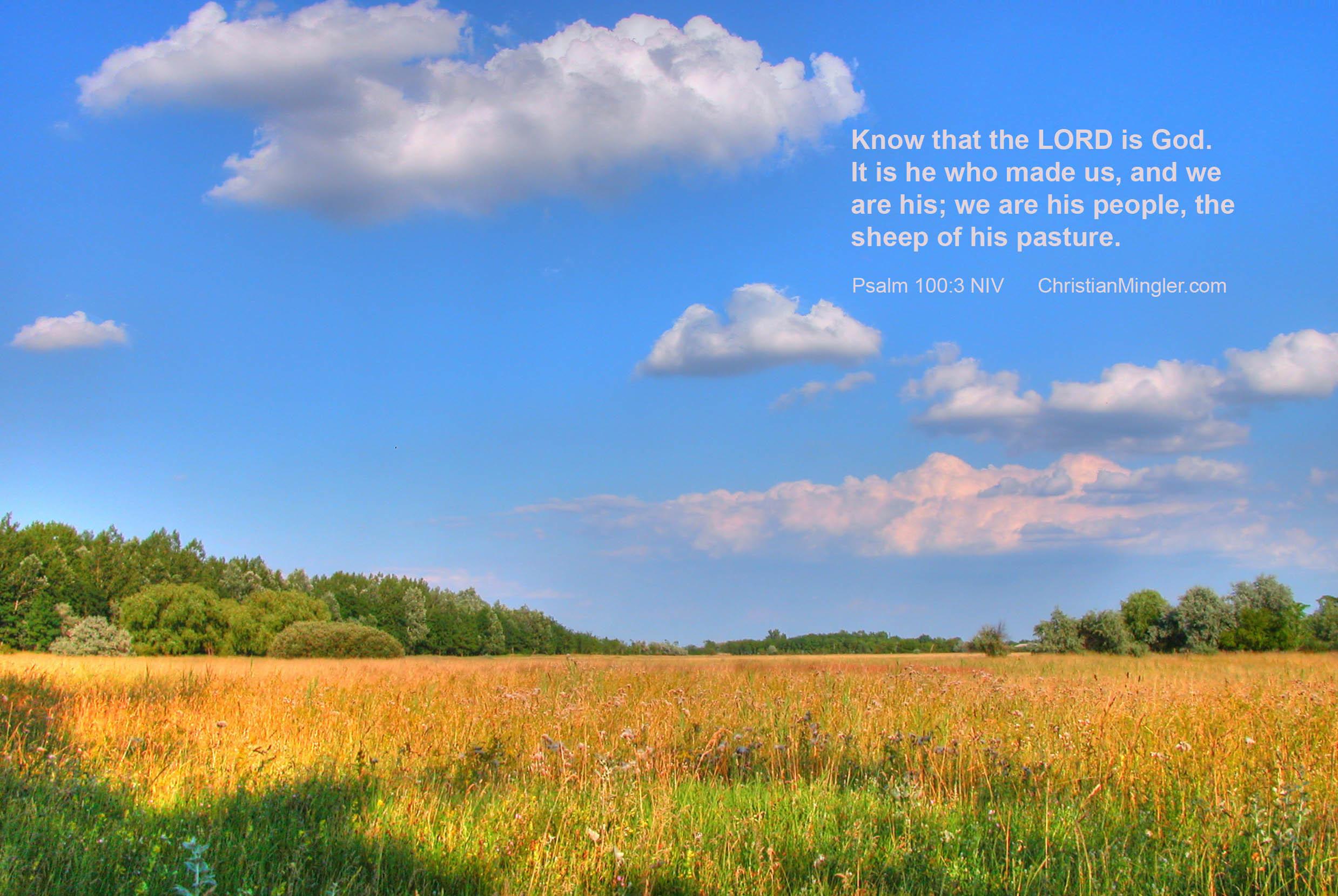 Psalm 100: 3 Christian wallpaper