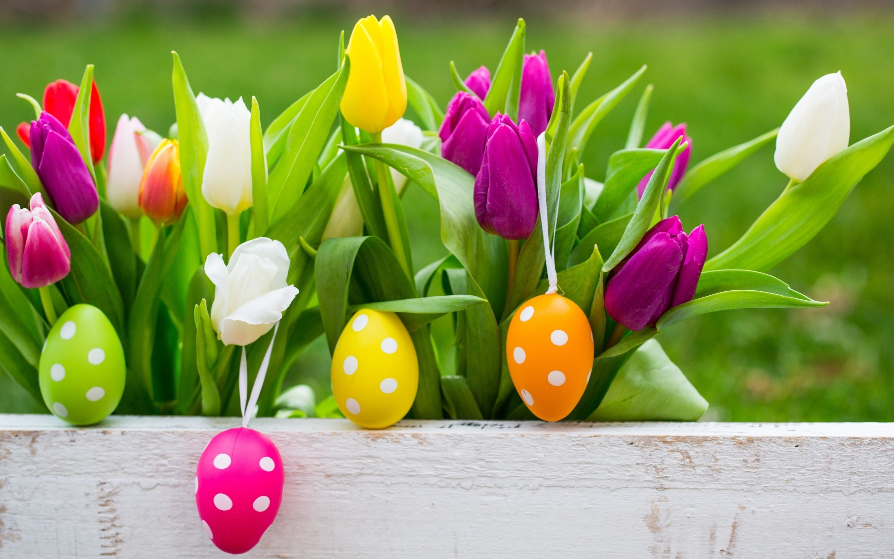 Easter Eggs On Flowers Background Wallpapers – – 1042192