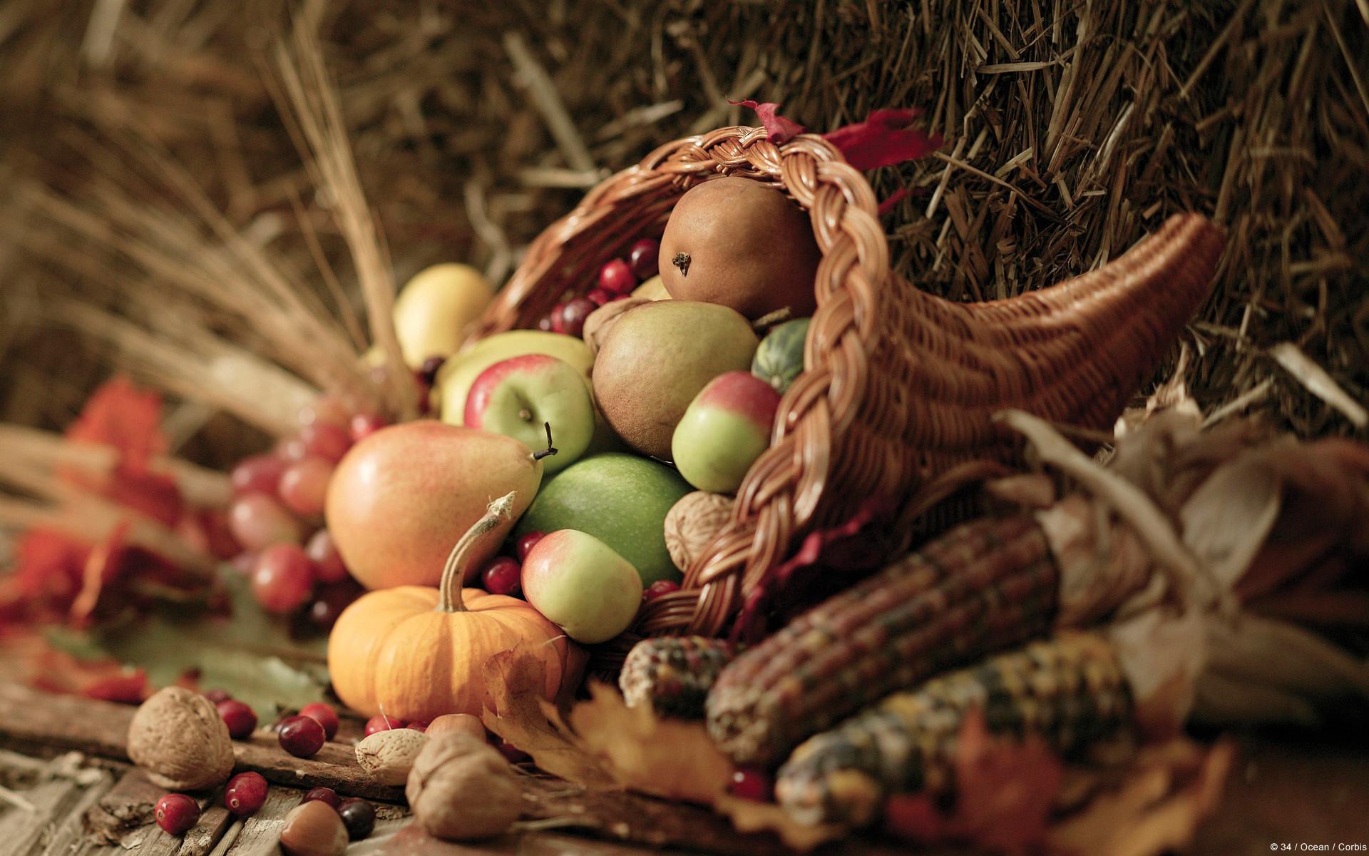 25 Festive Thanksgiving Themes, Desktop Wallpapers, Facebook Themes .