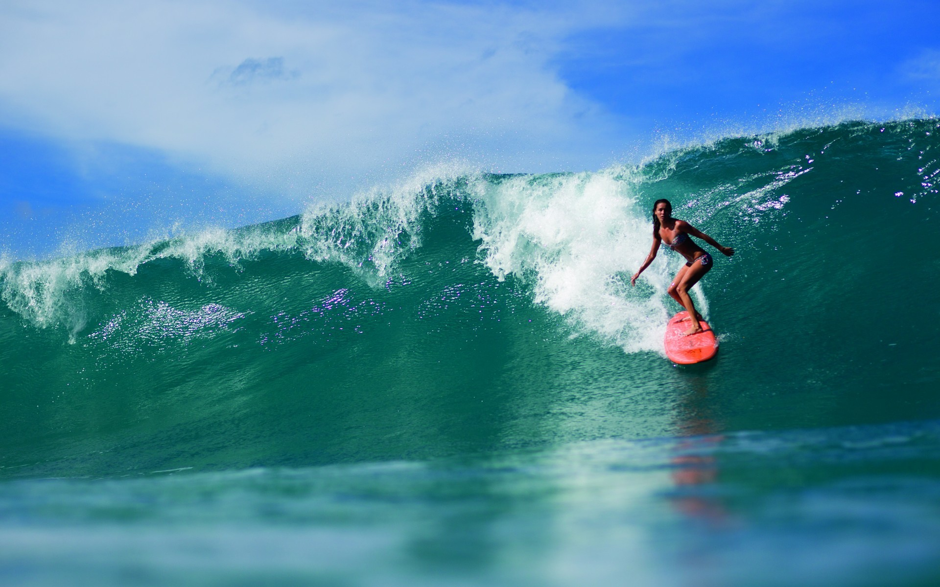 Wallpaper: Surfing Pic