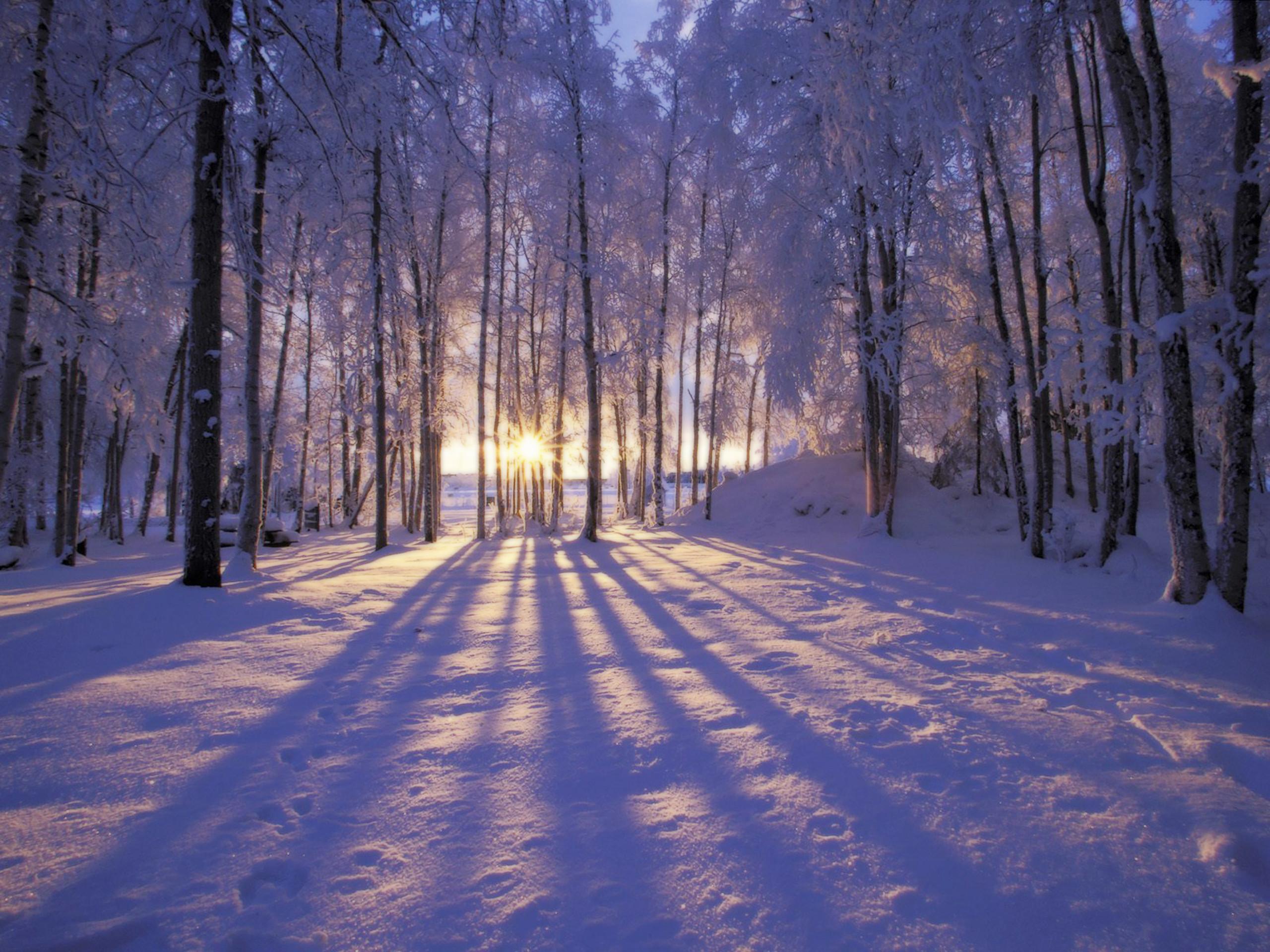 Christmas Winter Scenes Desktop Wallpaper #1
