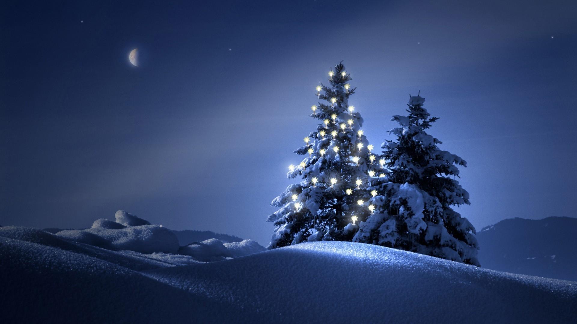 Snowy Christmas Tree Wallpaper (23)