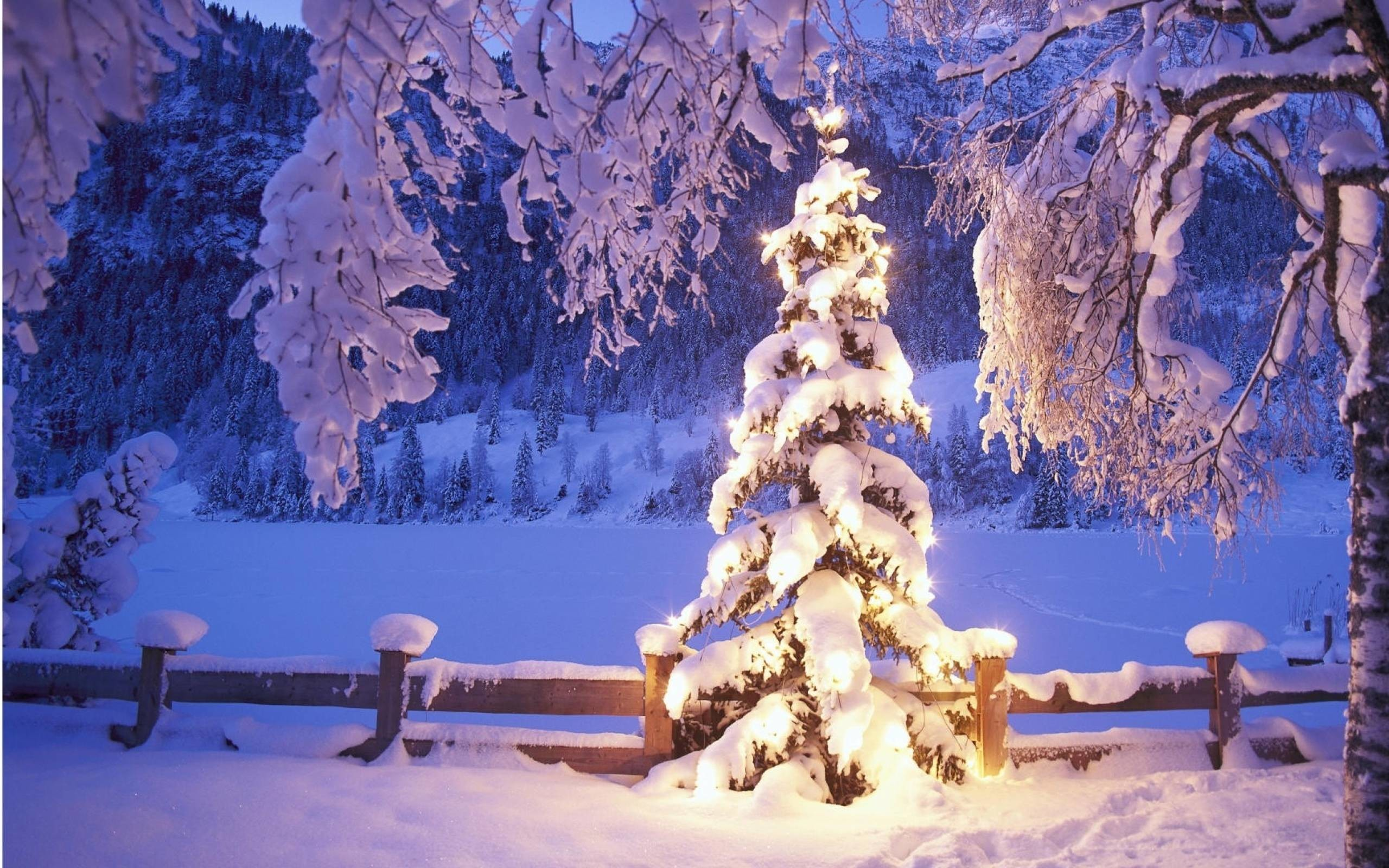 Images For > Christmas Scene Background