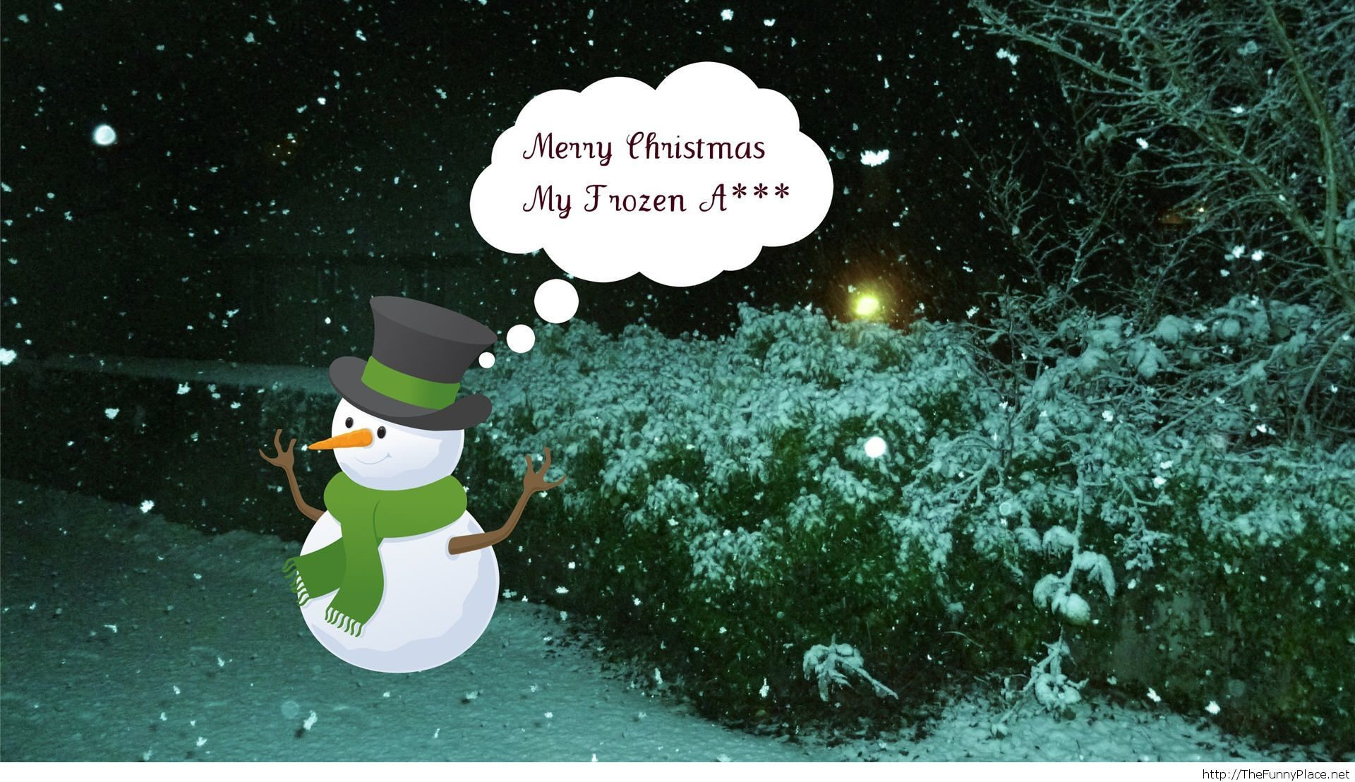 Funny Merry Christmas wallpaper