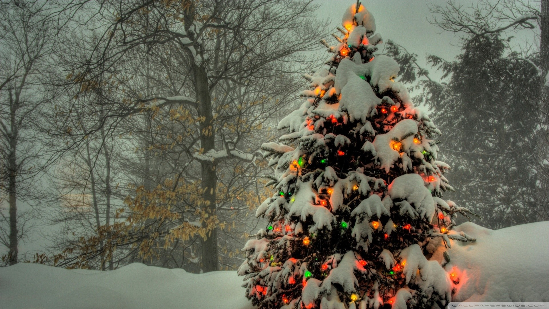 christmas_tree_outside-wallpaper-· Hanging Christmas Balls
