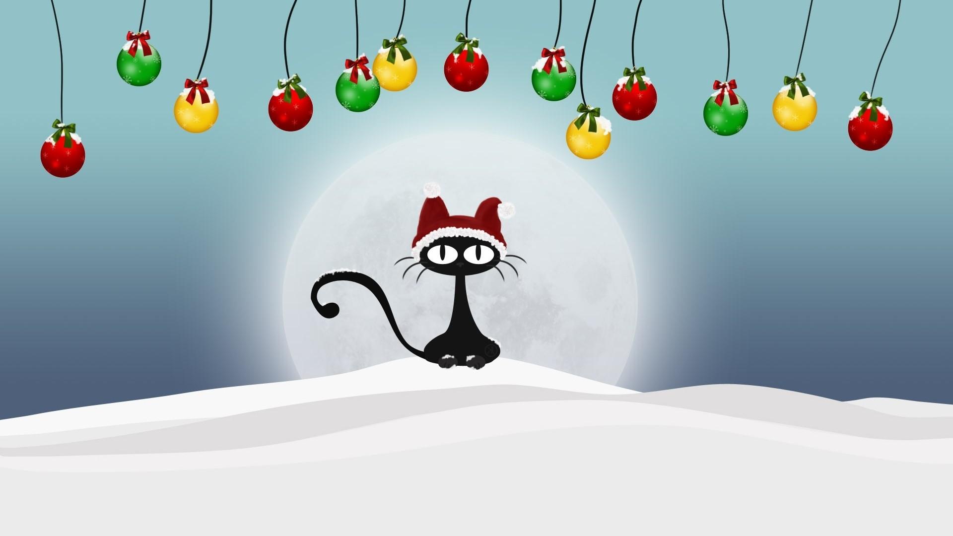 … funny christmas cat widescreen wallpaper wide wallpapers net …