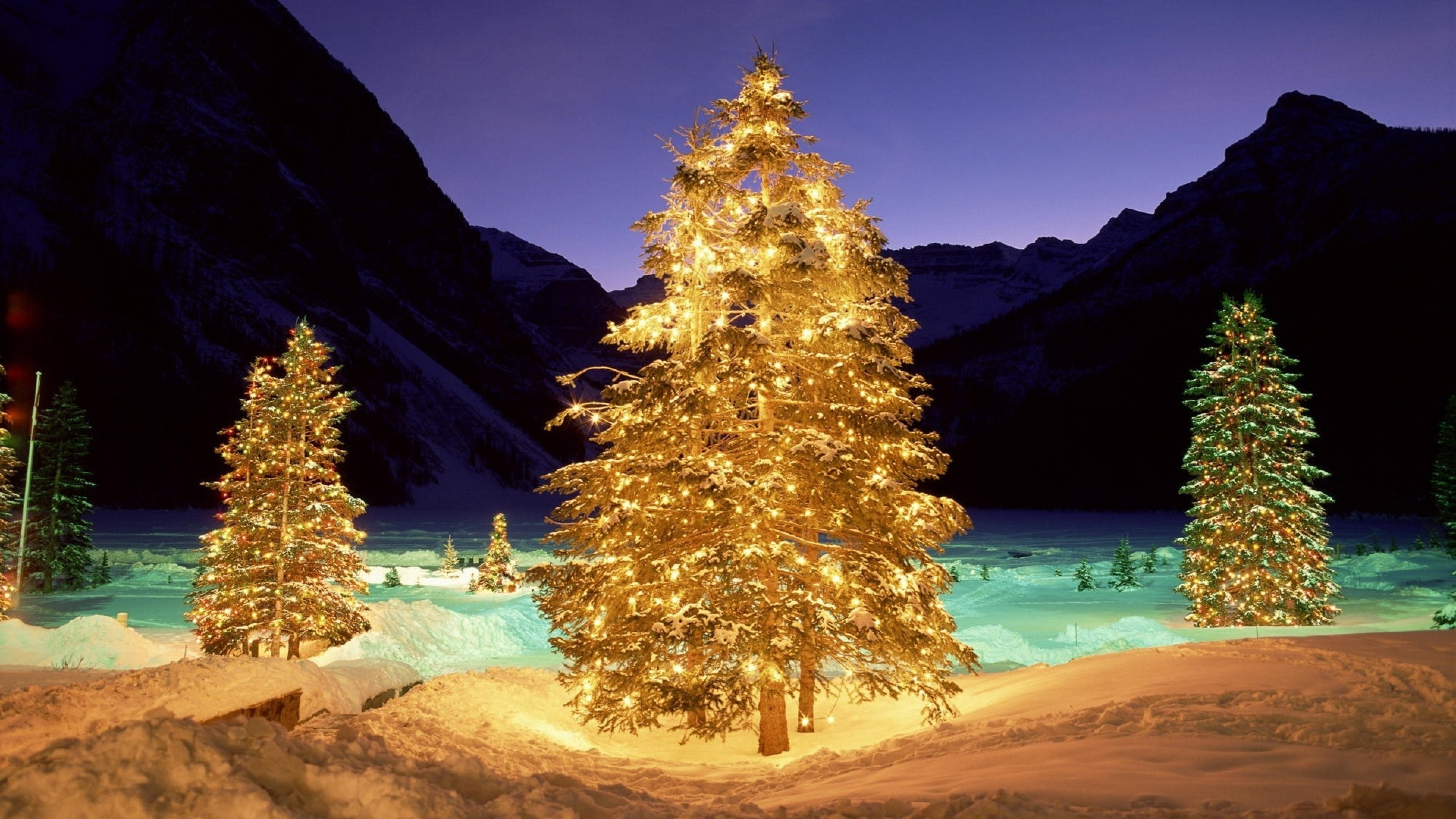 … Background 4K Ultra HD. Wallpaper trees, snow, christmas, new  year, garlands