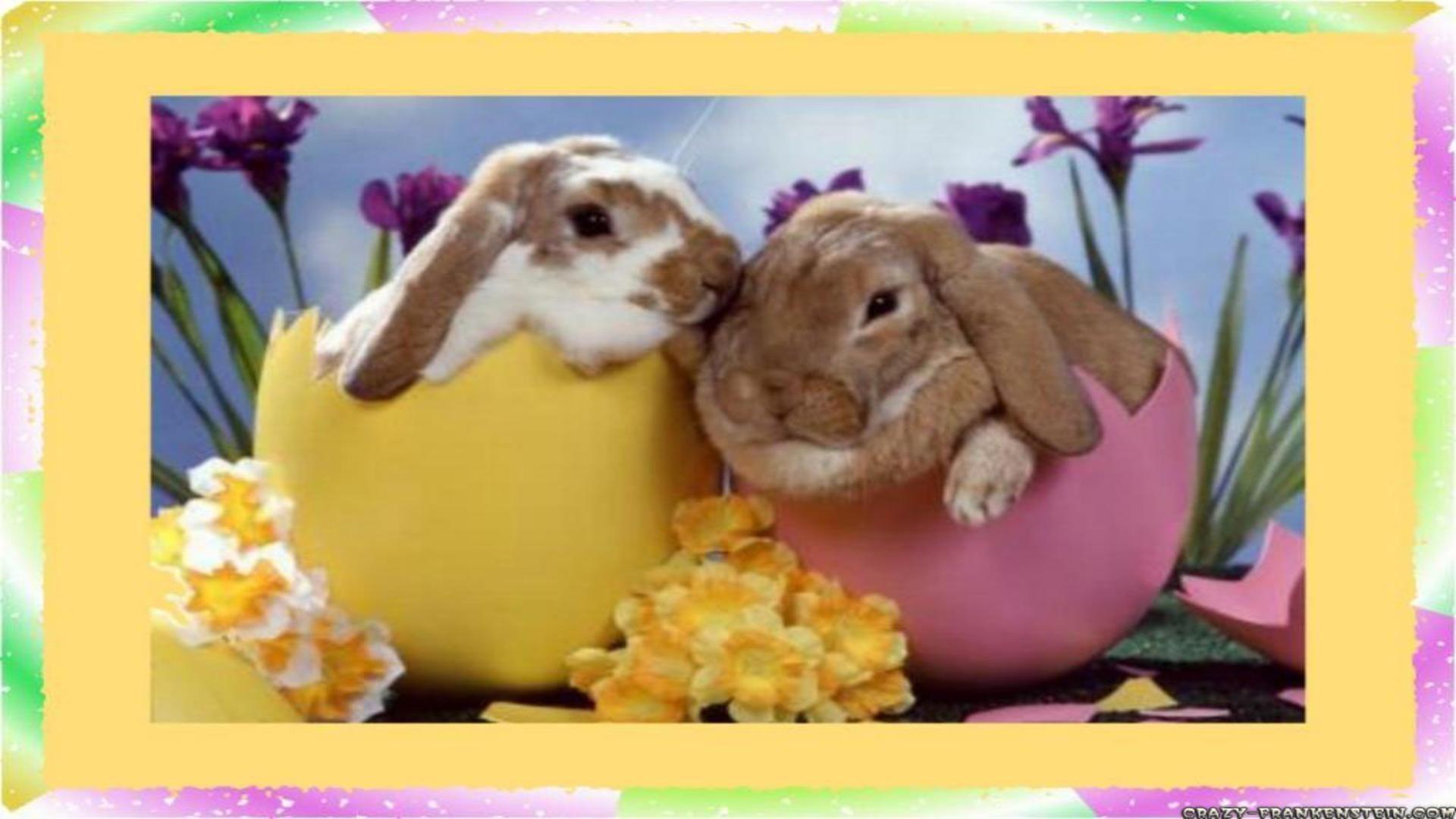 Free Easter Wallpaper For Desktop (06)