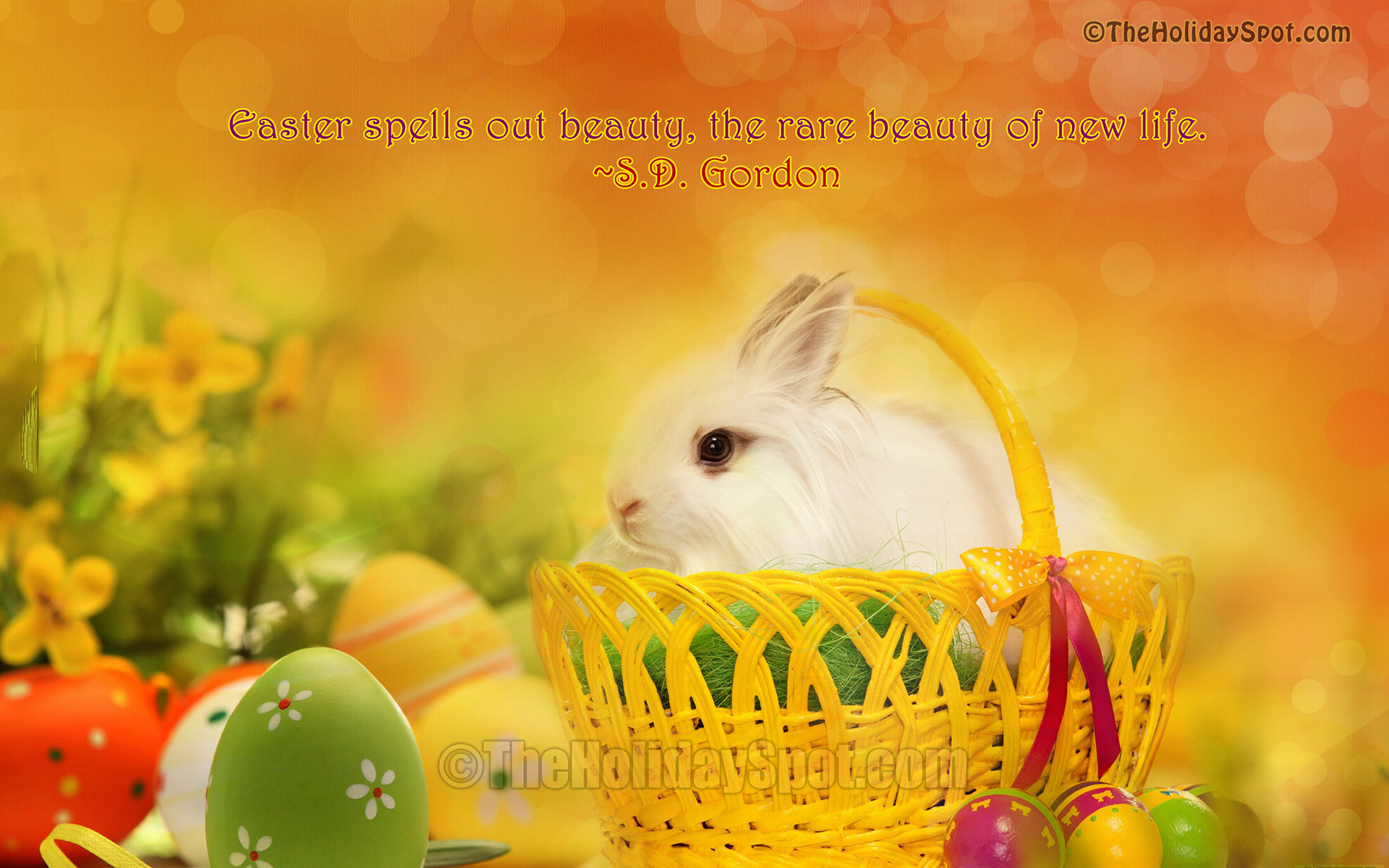 Easter Bunny in Basket Wallpaper