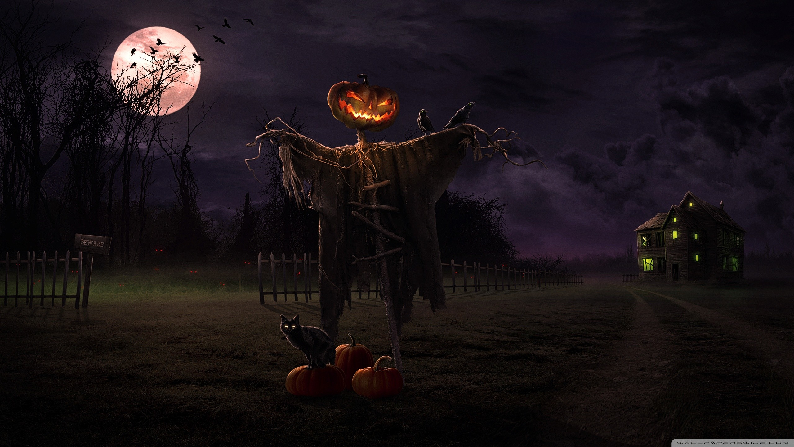 Spooky Path HD Wide Wallpaper for Widescreen