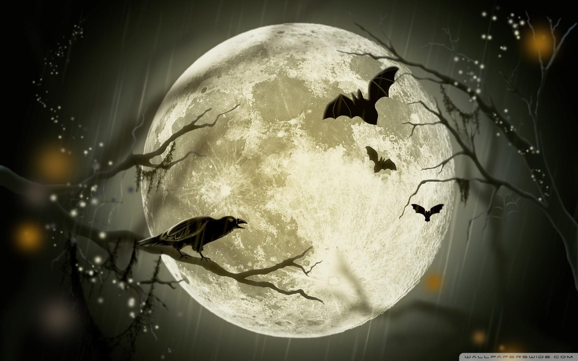 Halloween Moon HD Wide Wallpaper for Widescreen