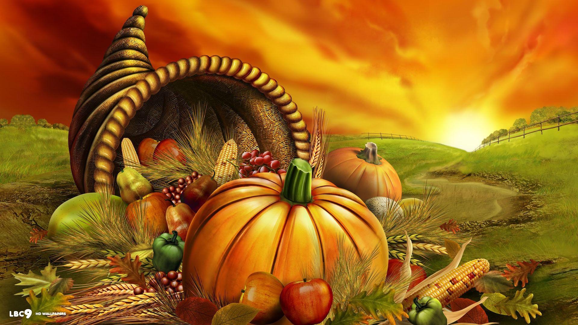 thanksgiving day autumn fruit harvest pumpkin orange sunset holiday desktop  background