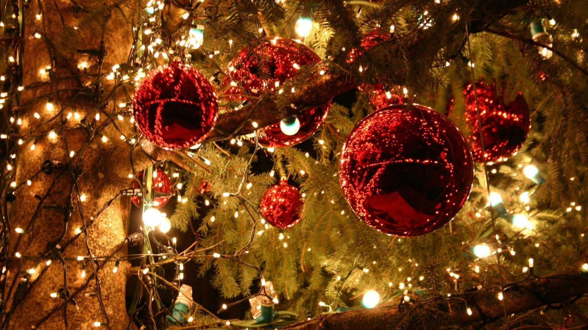 Christmas Trees Decorated. These desktop wallpapers …
