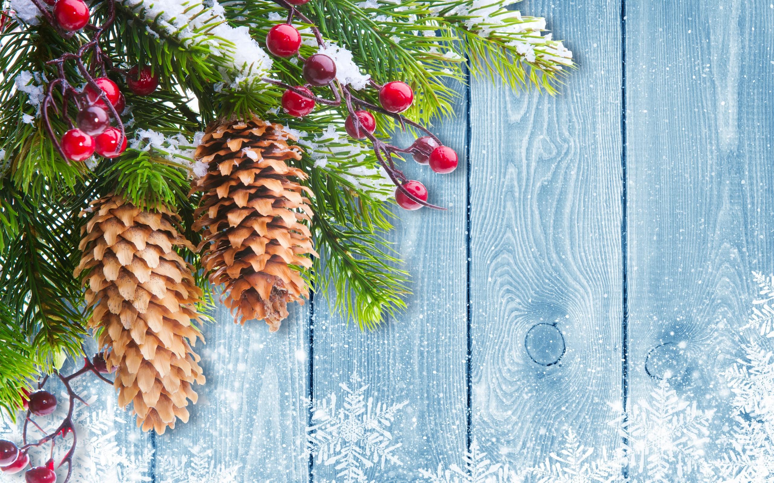 Christmas Tree Branch Mistletoe Desktop Wallpaper Uploaded by DesktopWalls