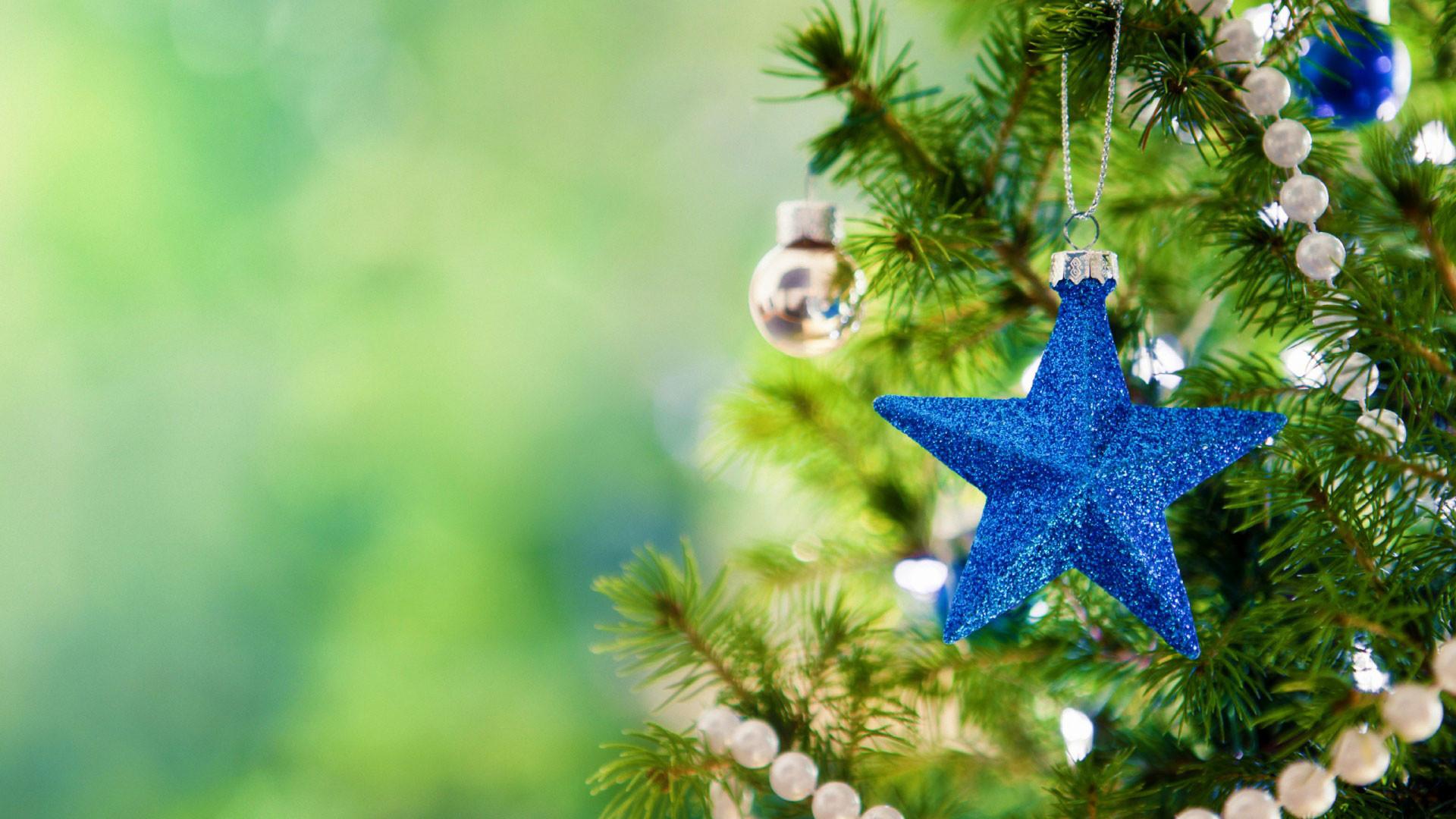 hd pics photos christmas christmas tree star desktop background wallpaper