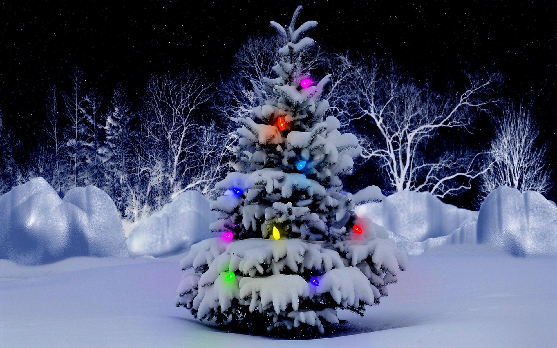 Christmas Tree Wallpaper HD Desktop 1138 – HD Wallpapers Site