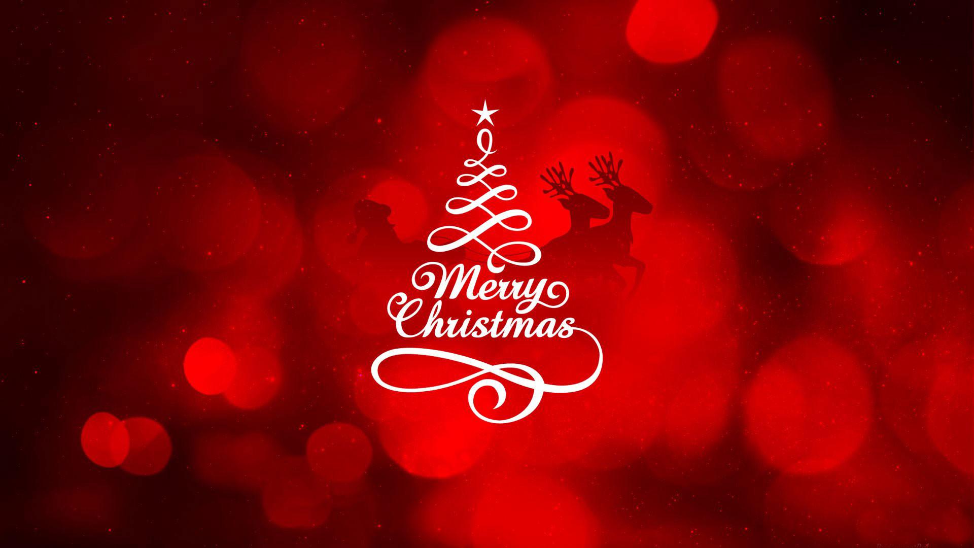 hd pics photos christmas merry christmas tree red desktop background  wallpaper