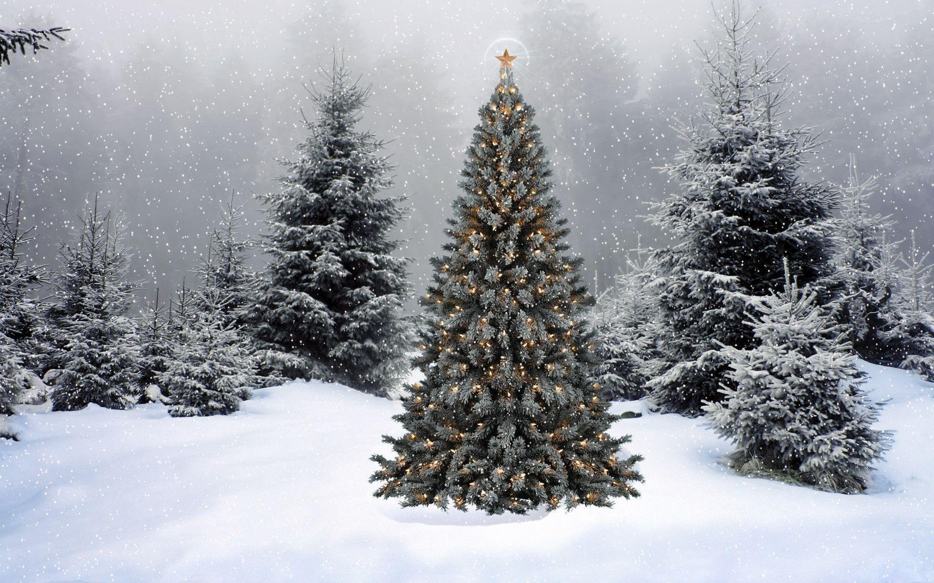 Christmas Scene Wallpapers – Full HD wallpaper search