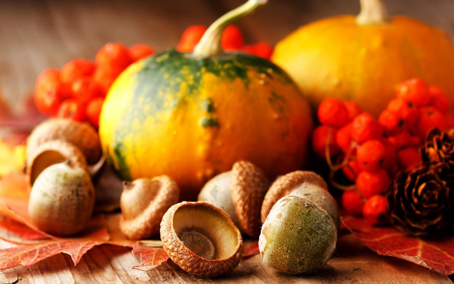 Thanksgiving-
