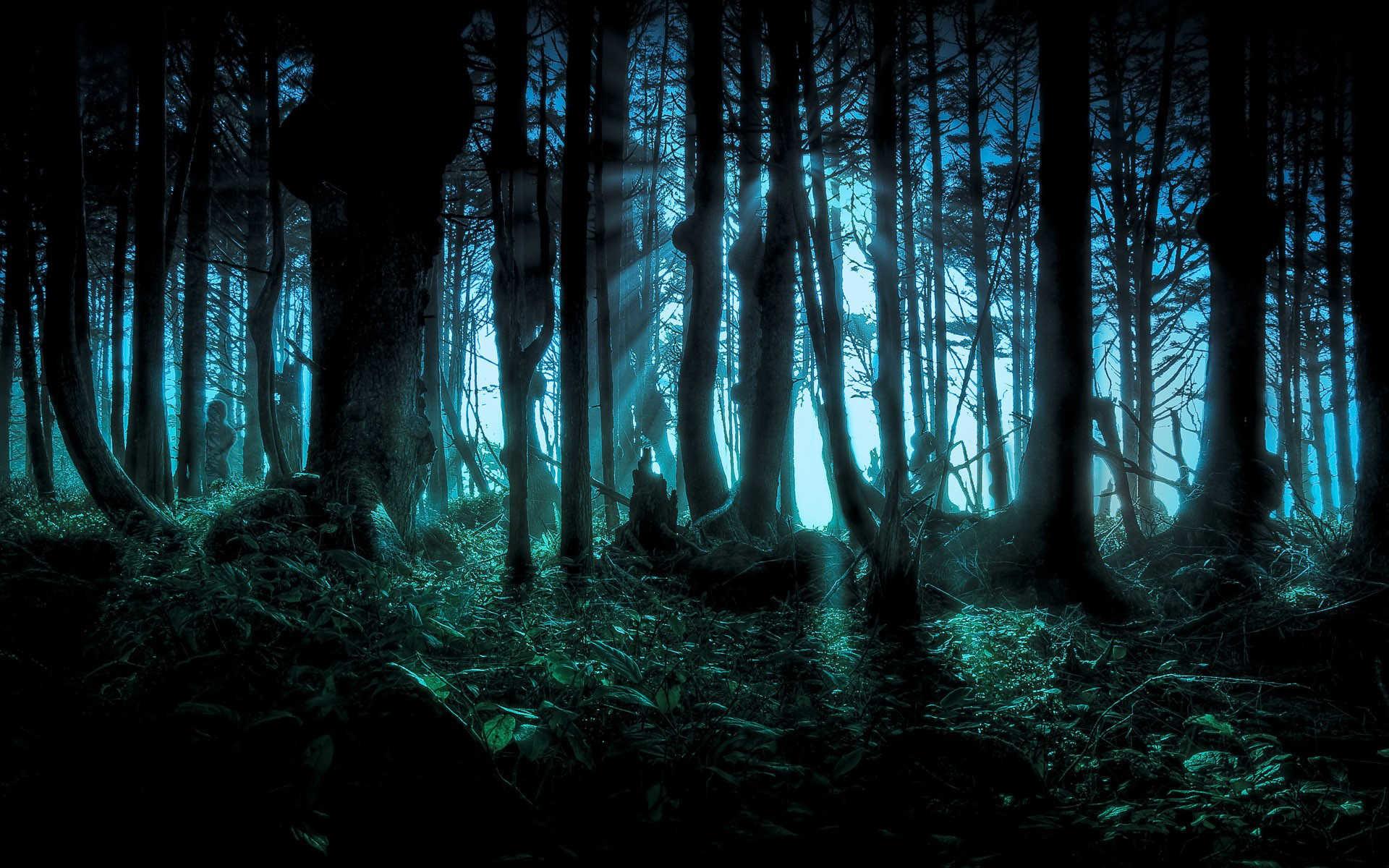Halloween Wallpaper Free Download Halloween Wallpaper HD Images
