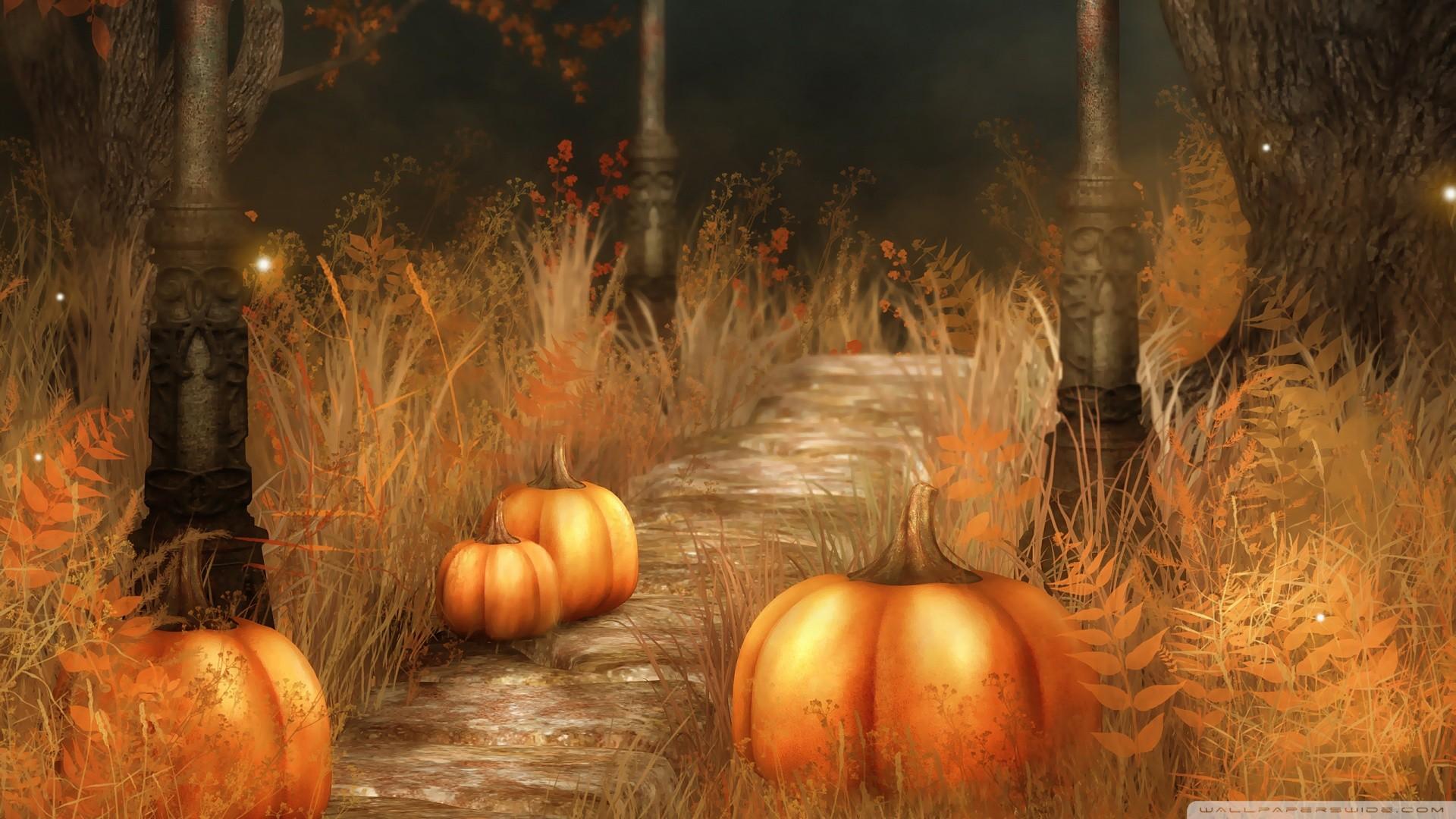 Cute Fall Pumpkins Wallpaper | Pumpkins Halloween Wallpaper Free Download