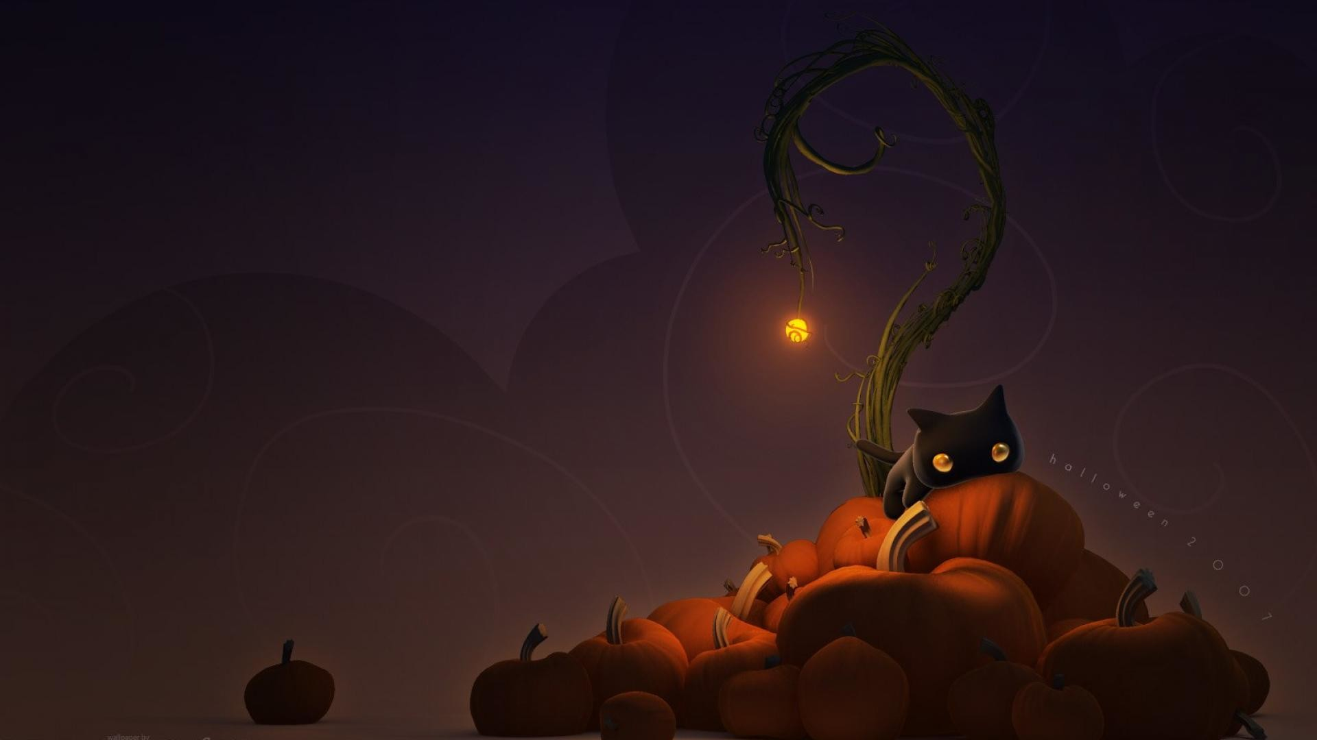 Black Cat Pumpkin Halloween Wallpaper Wallpaper