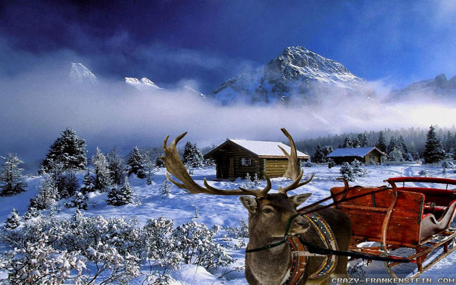 Wallpaper: Scene Winter Christmas wallpapers. Resolution: 1024×768    1280×1024   1600×1200. Widescreen Res: 1440×900   1680×1050   1920×1200
