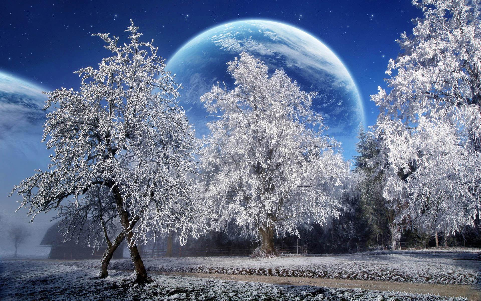 Christmas Winter Scenes Desktop Wallpapers HD Wallpapers Pop 1920×1200