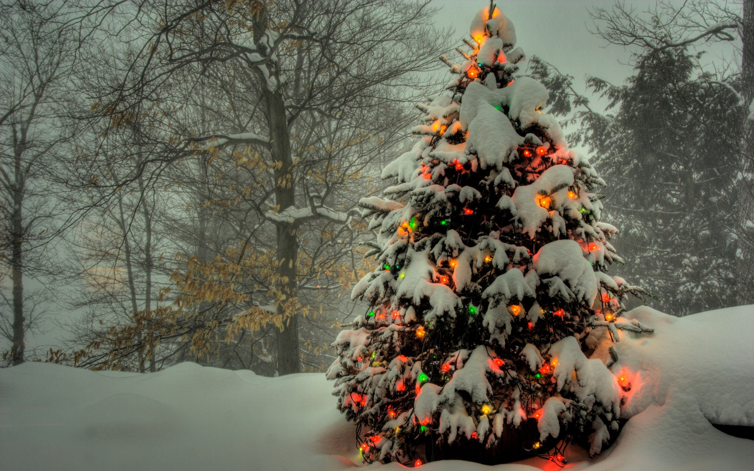 499 best wallpaper images on Pinterest   Christmas scenes, Snow and  Christmas art