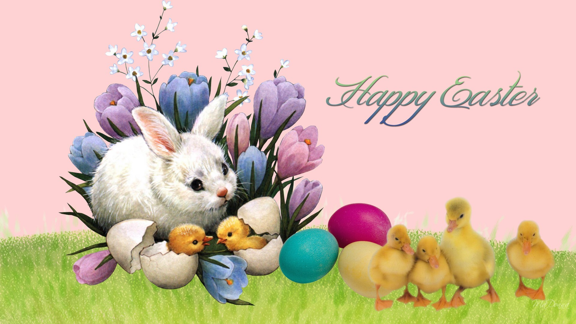 free wallpaper easter bunny rabbits | Easter Bunny Friends