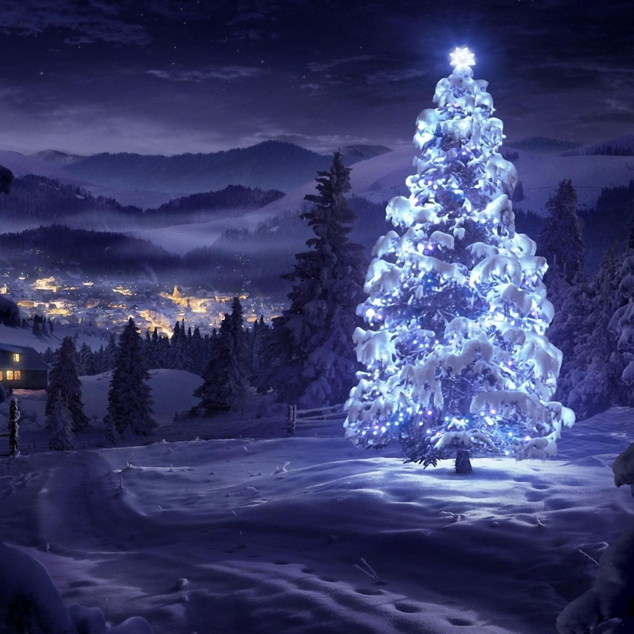 5855 16: Christmas Tree Greeting Cards iPad wallpaper
