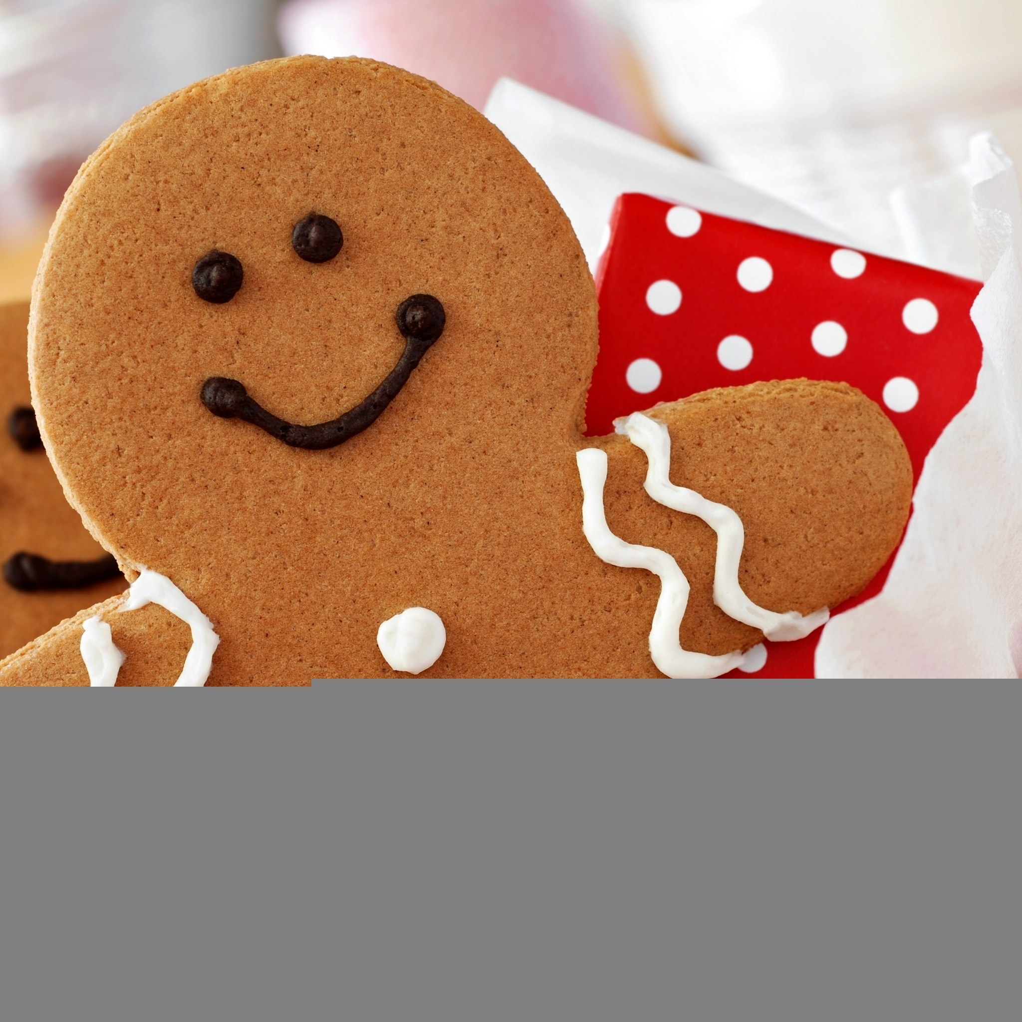 … christmas and new year cookies ipad air wallpaper download …