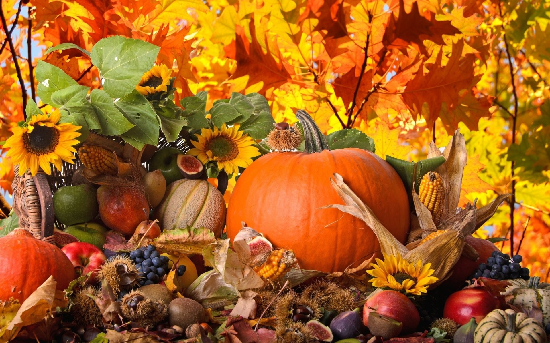 HD Wallpaper | Background ID:314211. Holiday Thanksgiving