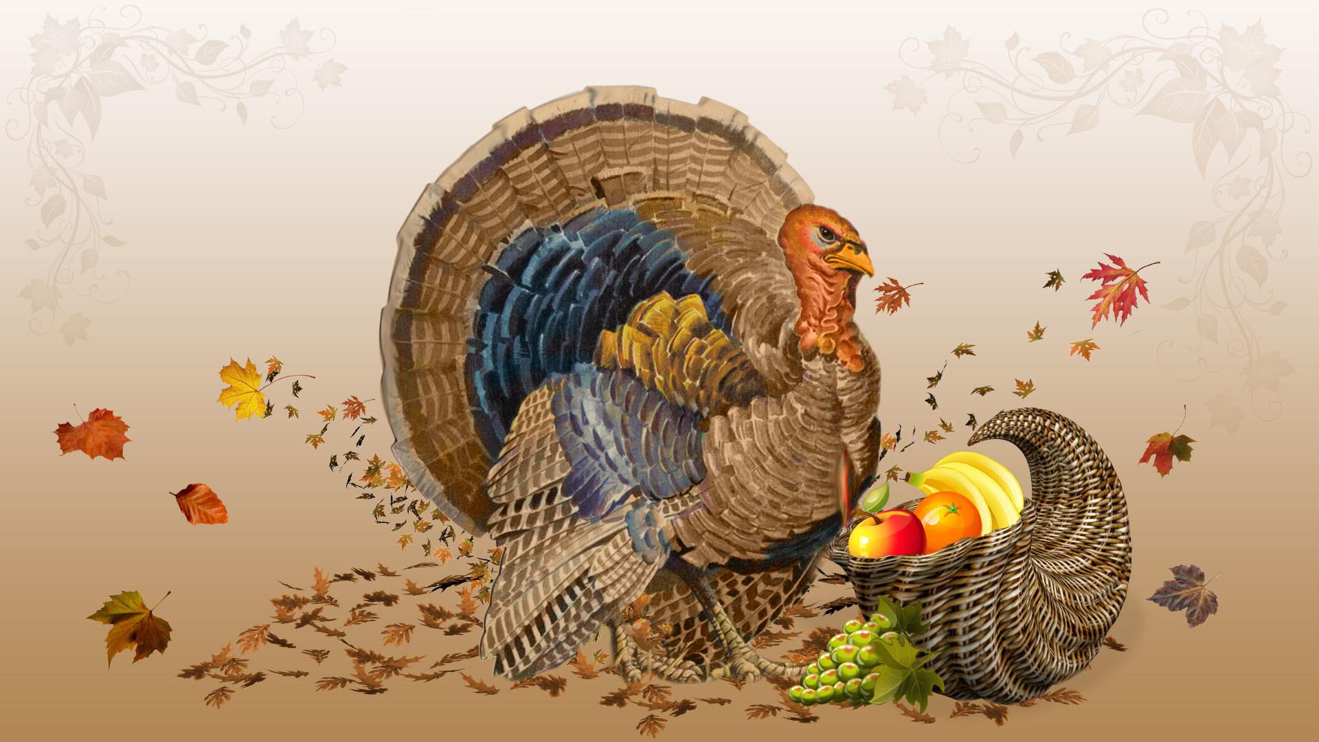 Happy thanksgiving 2012 turkey Wallpaper HD