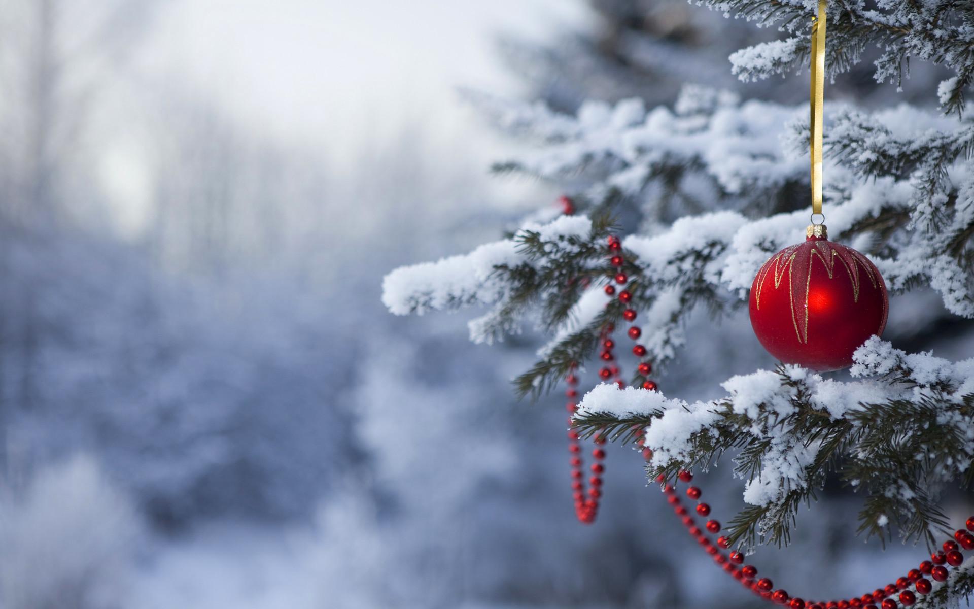 christmas winter desktop wallpaper – www.wallpapers-in-hd.com