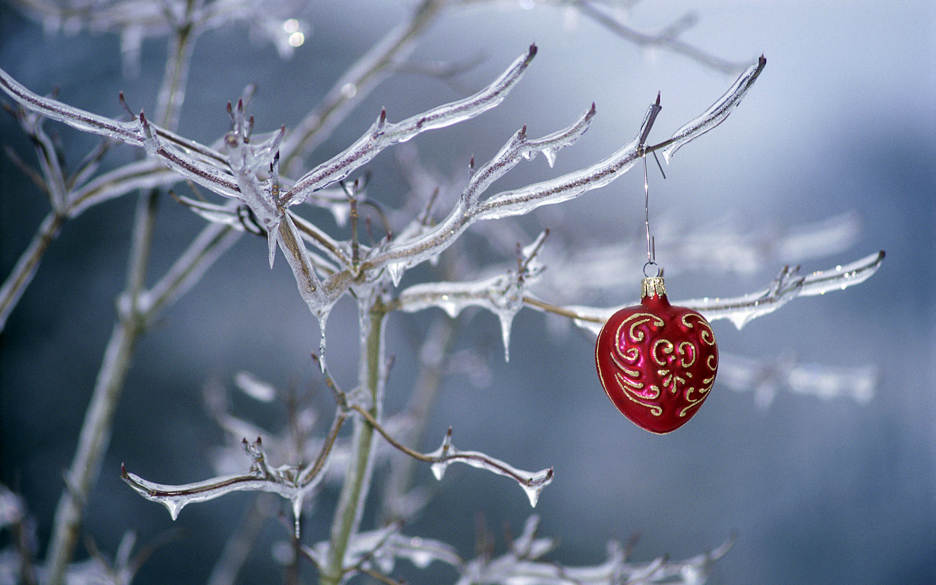 Ornament hanging on a frozen tree