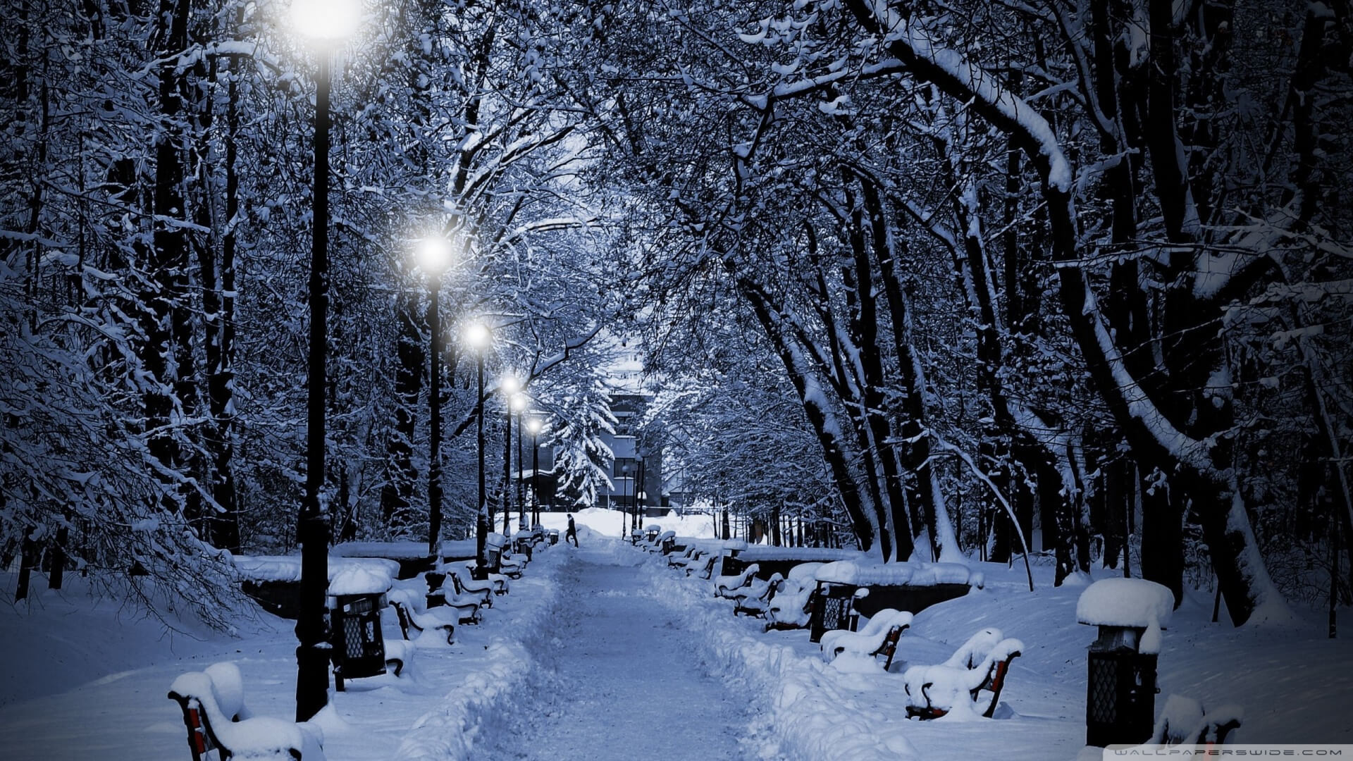Winter Themed Backgrounds (12)