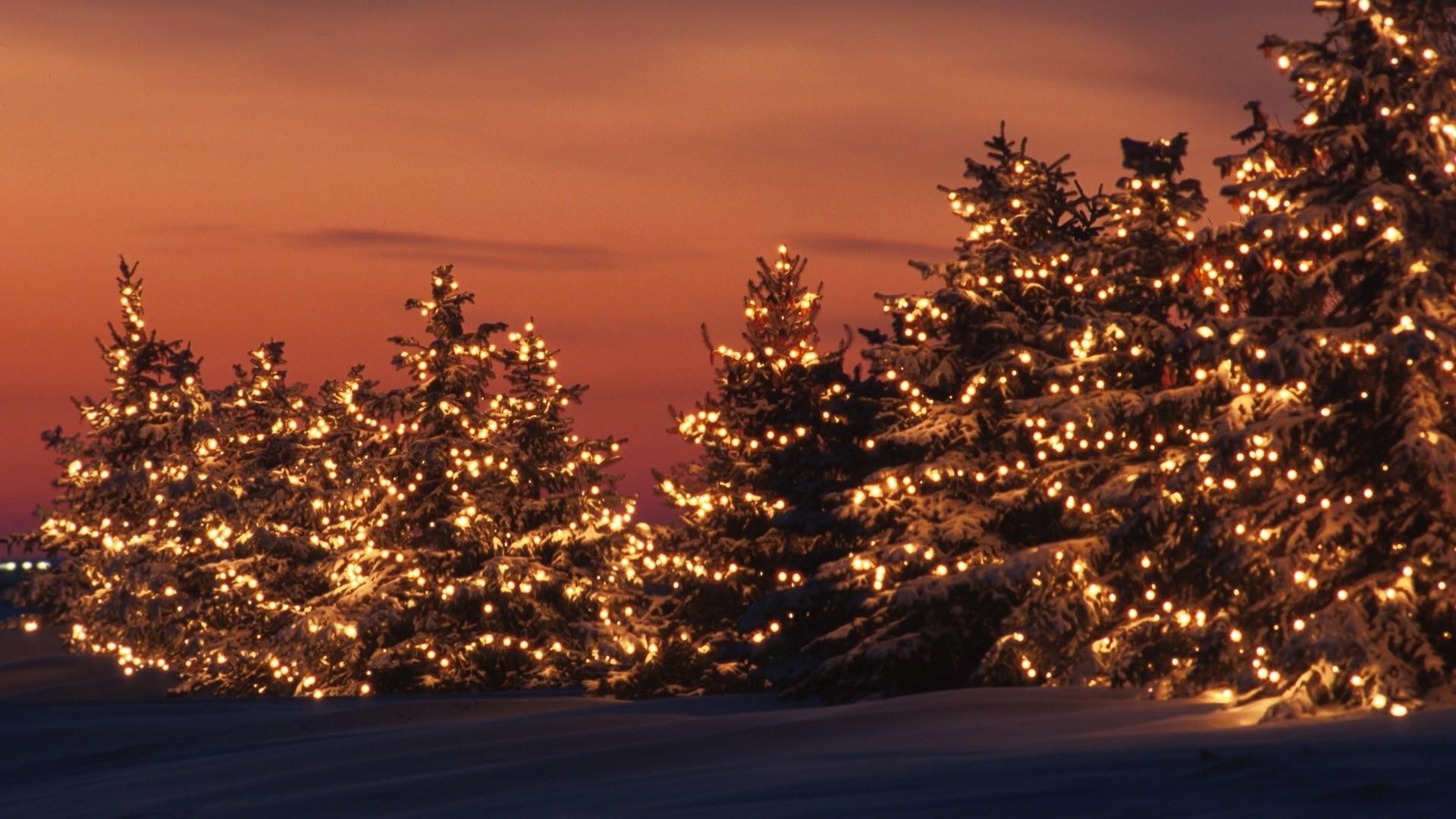 Free Desktop Christmas Lights Wallpapers Winter.