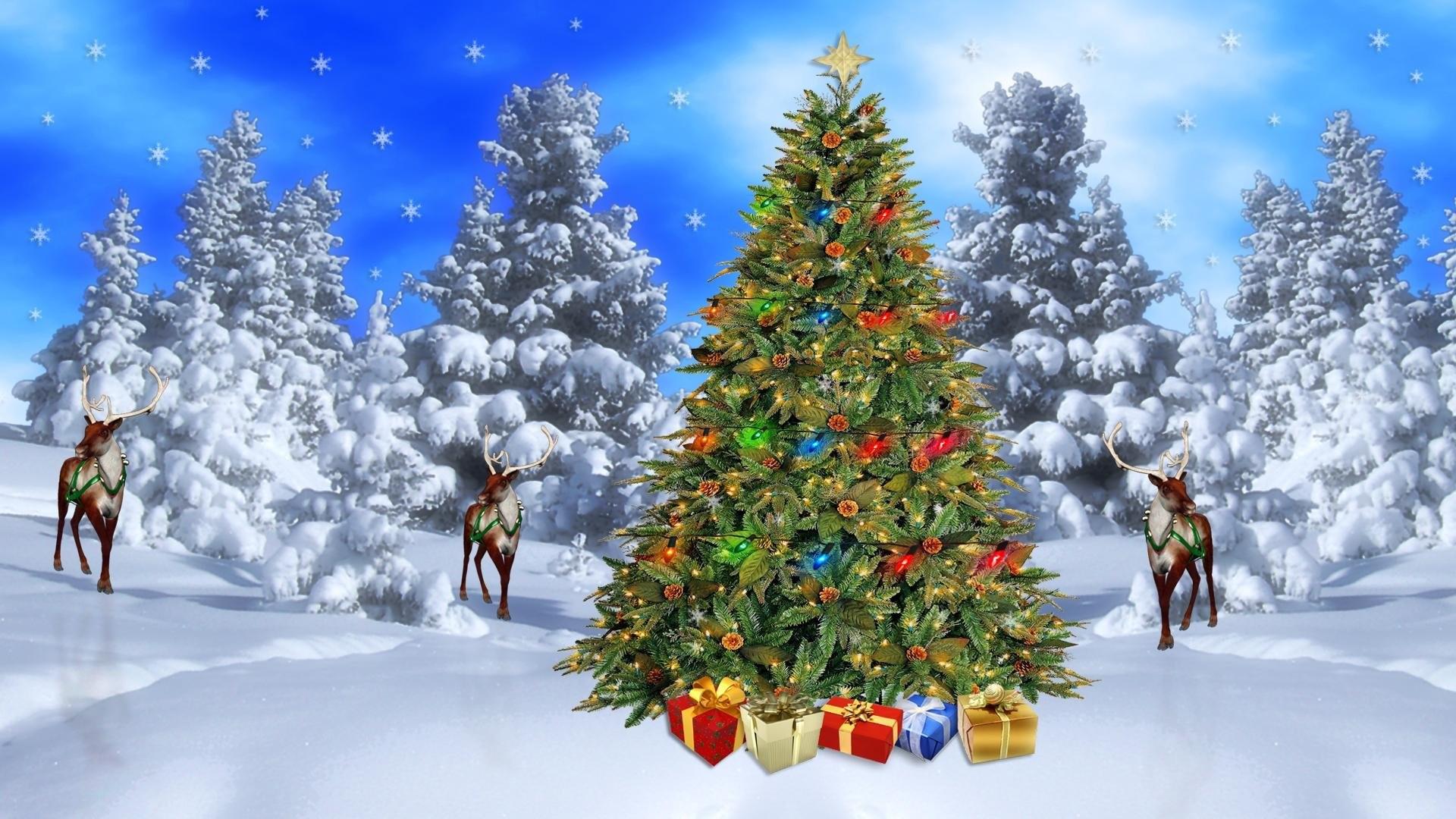 Зимние картинки с елкой на рабочий стол