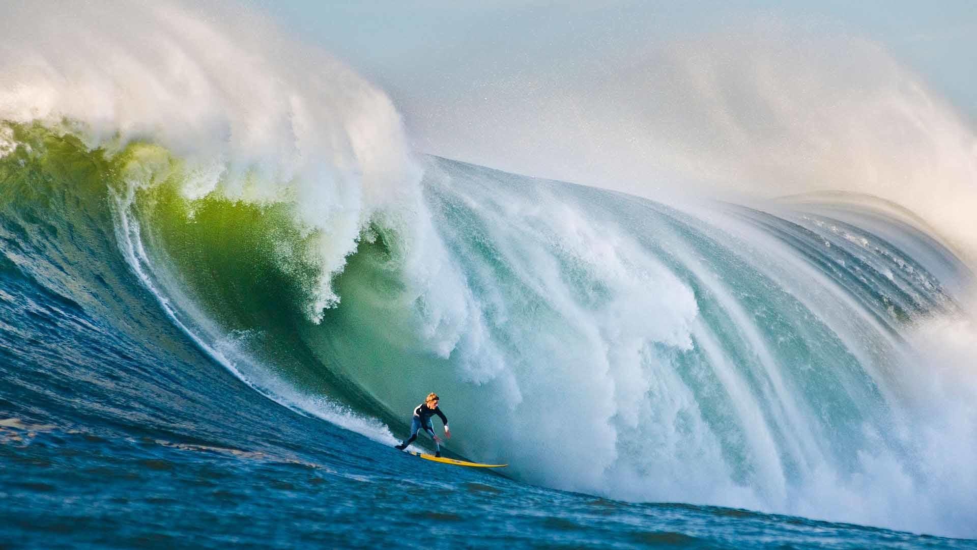 Mavericks Surf #7017963