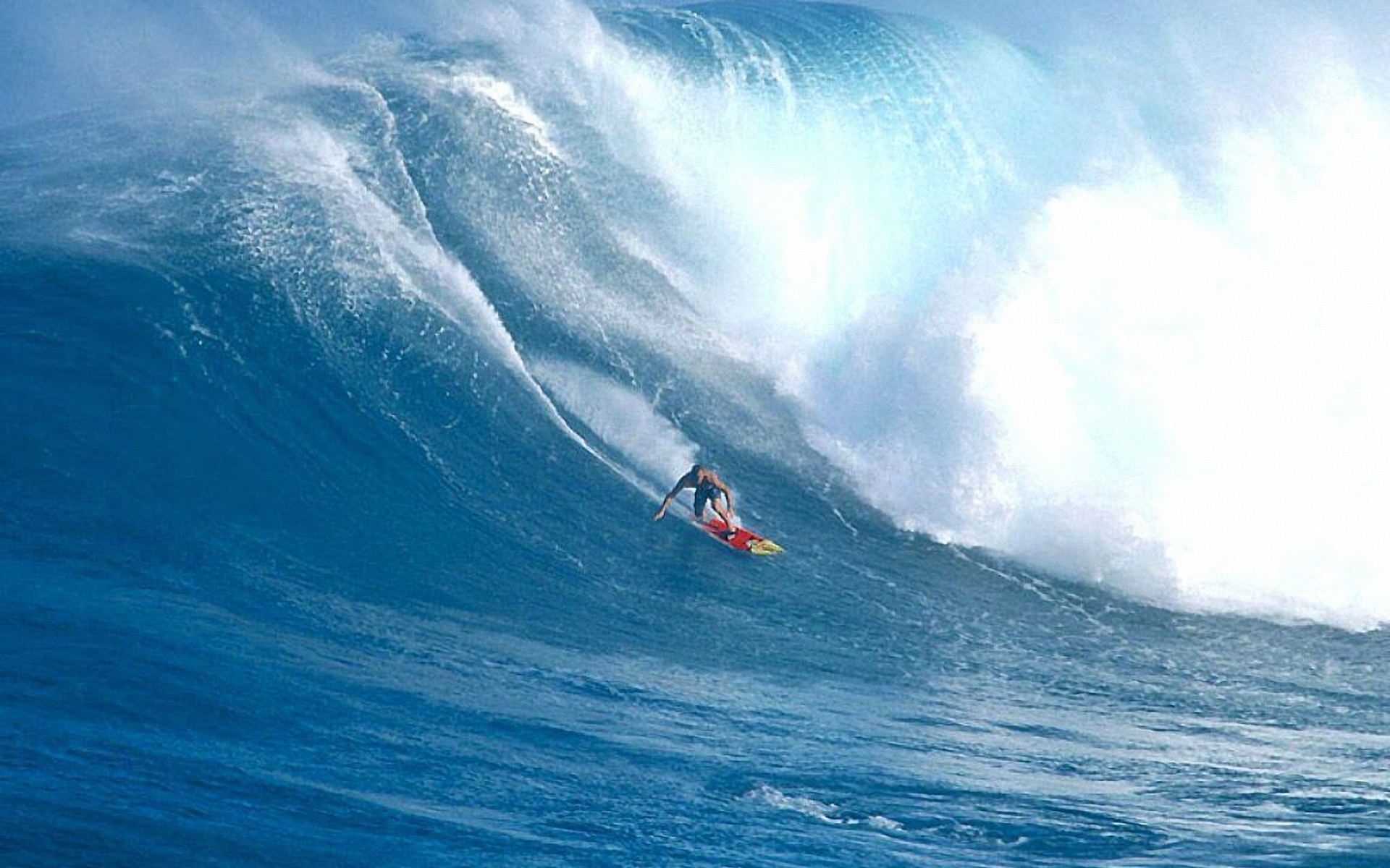 Previous: Surf …